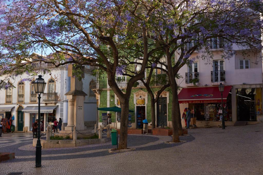Portugalia_DSC00983